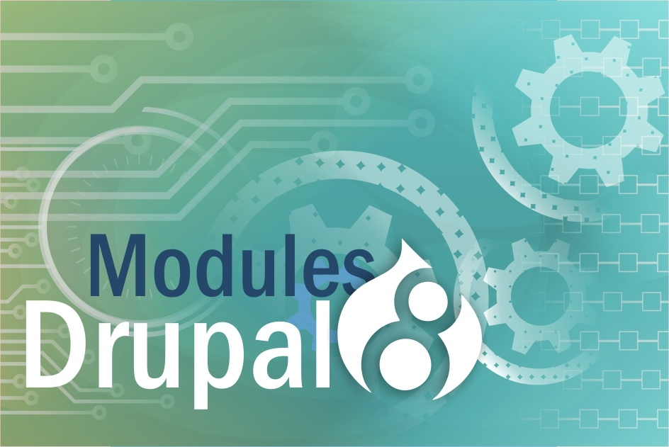 Drupal 8: Linkit, Paragraphs and Search API modules