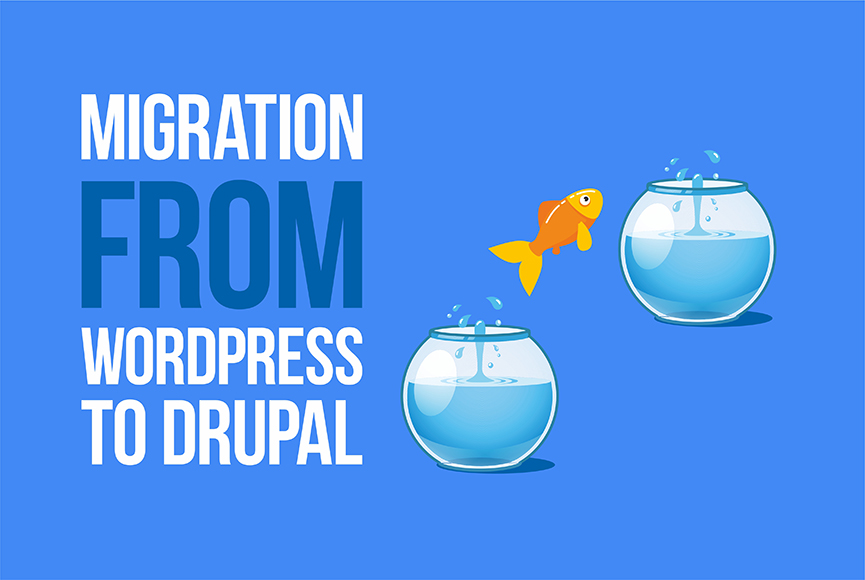 Migration from WordPress to Drupal: what makes it a great choice