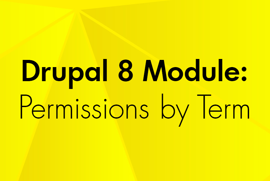 The Permissions By Term Module