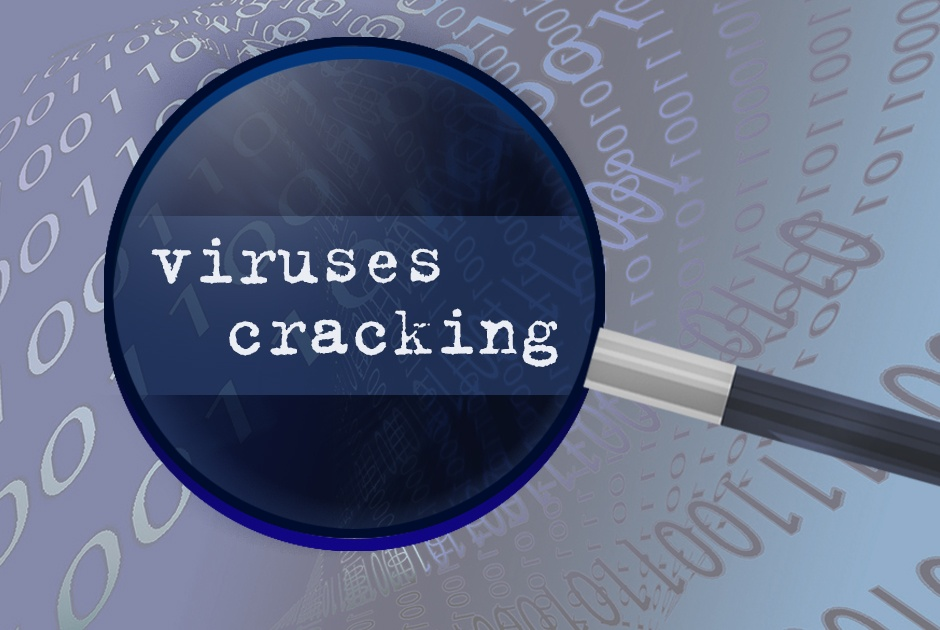 How to protect your website from viruses and cracking