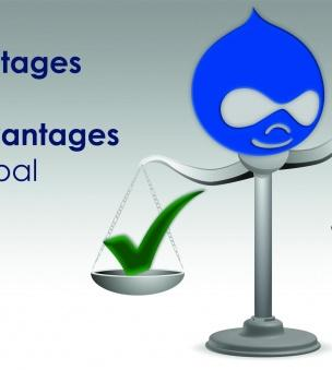 Advantages and disadvantages of Drupal