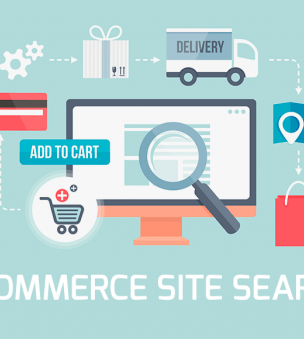 What should a search box be like to provide a successful e-commerce site?